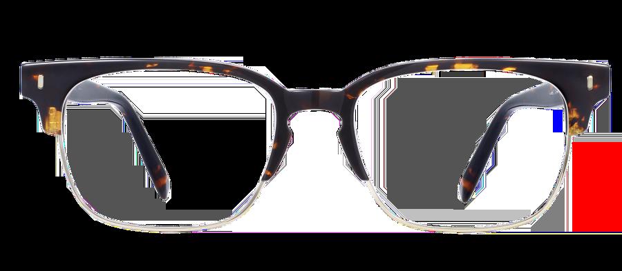 Warby Parker Ames Frames